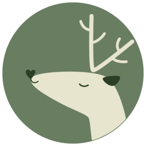 Vivid Lify Logo